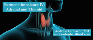 Hormone Imbalance IV:  Adrenal and Thyroid