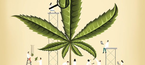 Andrew Lenhardt, MD | Marijuana/ Hope or Hype?